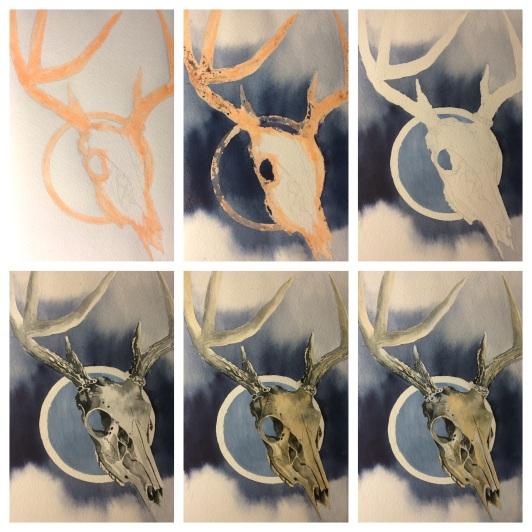 deer skull - progression