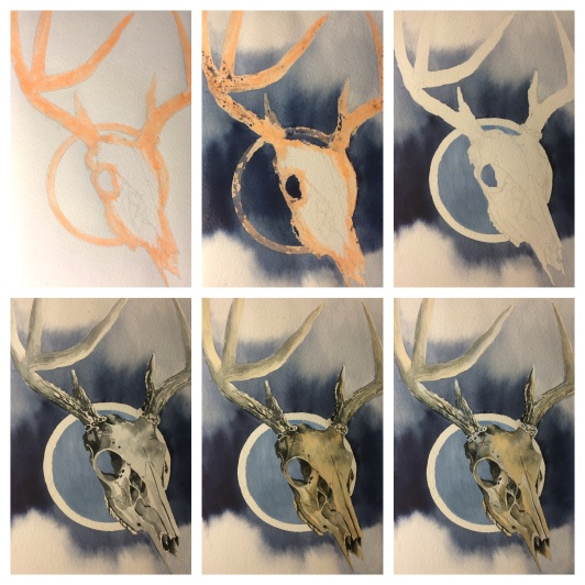 deer skull - progression