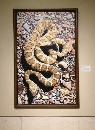 levacy-boothwesterartmuseum-snake