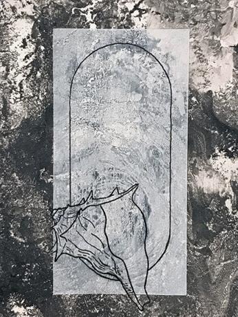 Collab-Rosa(orignal)