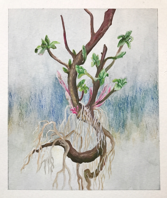 Week14-Roots