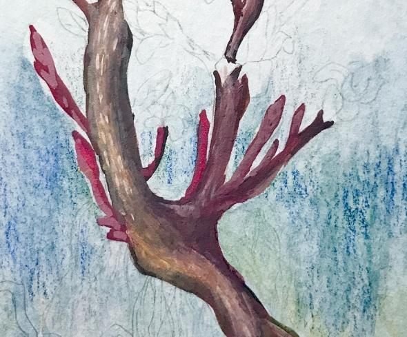 Week14-Roots(detail2)