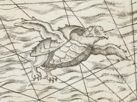 flyingturtle(1558)