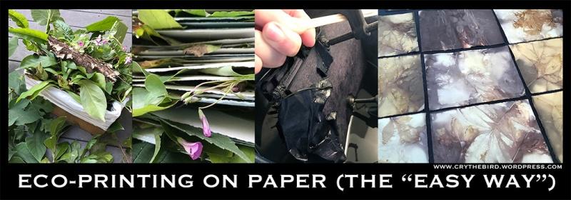crythebird-ecoprinting-teaser