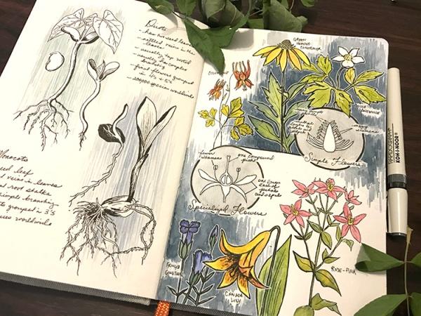 CryTheBird-wk35-Botany101(1)
