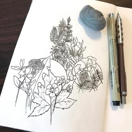 CryTheBird-wk35-Botany2