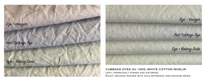 Crythebird(Levacy)-CabbageDye-Fabric(2)