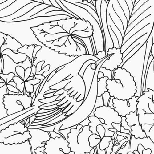 Crythebird(levacy)-emb-HostaWren(tease2)